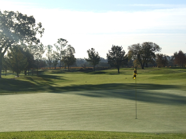 Our greens are some of the finest in the area