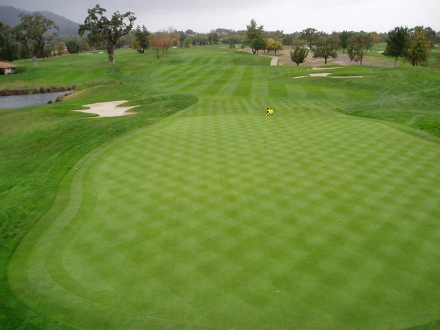 A lush fairway smoothly transitions into a smooth green
